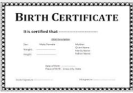 BIRTH CERTIFICATES agents in  Benniganahalli,Bangalore | Suresh | Tesz